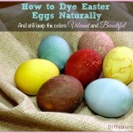 Dyeing Easter Eggs Naturally is a Fun Family Project!