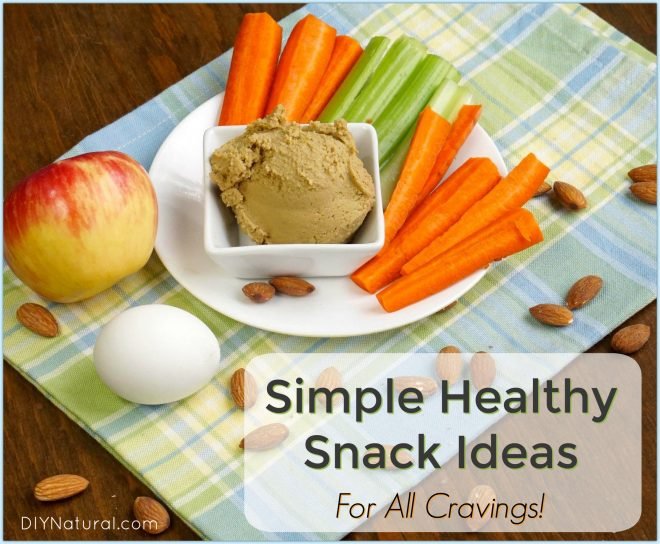 easy healthy snacks tips for healthy homemade snacks for any craving