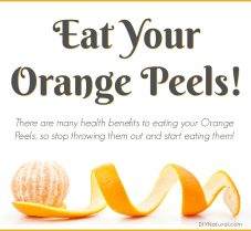 Reasons You Should Be Eating Your Orange Peels!