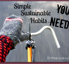 45 Simple Sustainable Habits You Need To Adopt