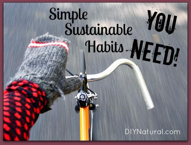 Eco Friendly Habits