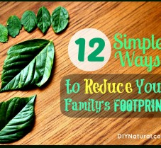 12 Simple Ways to Reduce Your Family's Footprint