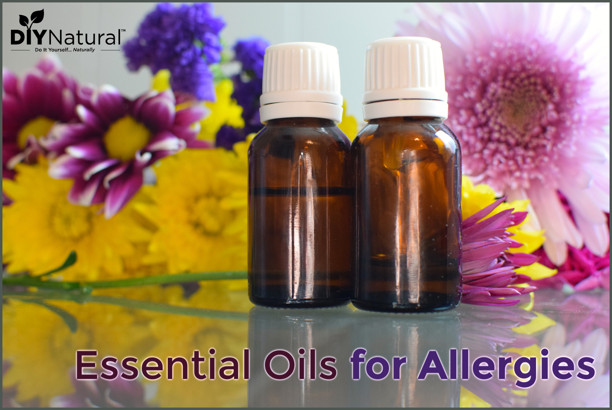 Essential Oils For Allergies Recipe Blends For Inhalers And Diffusers