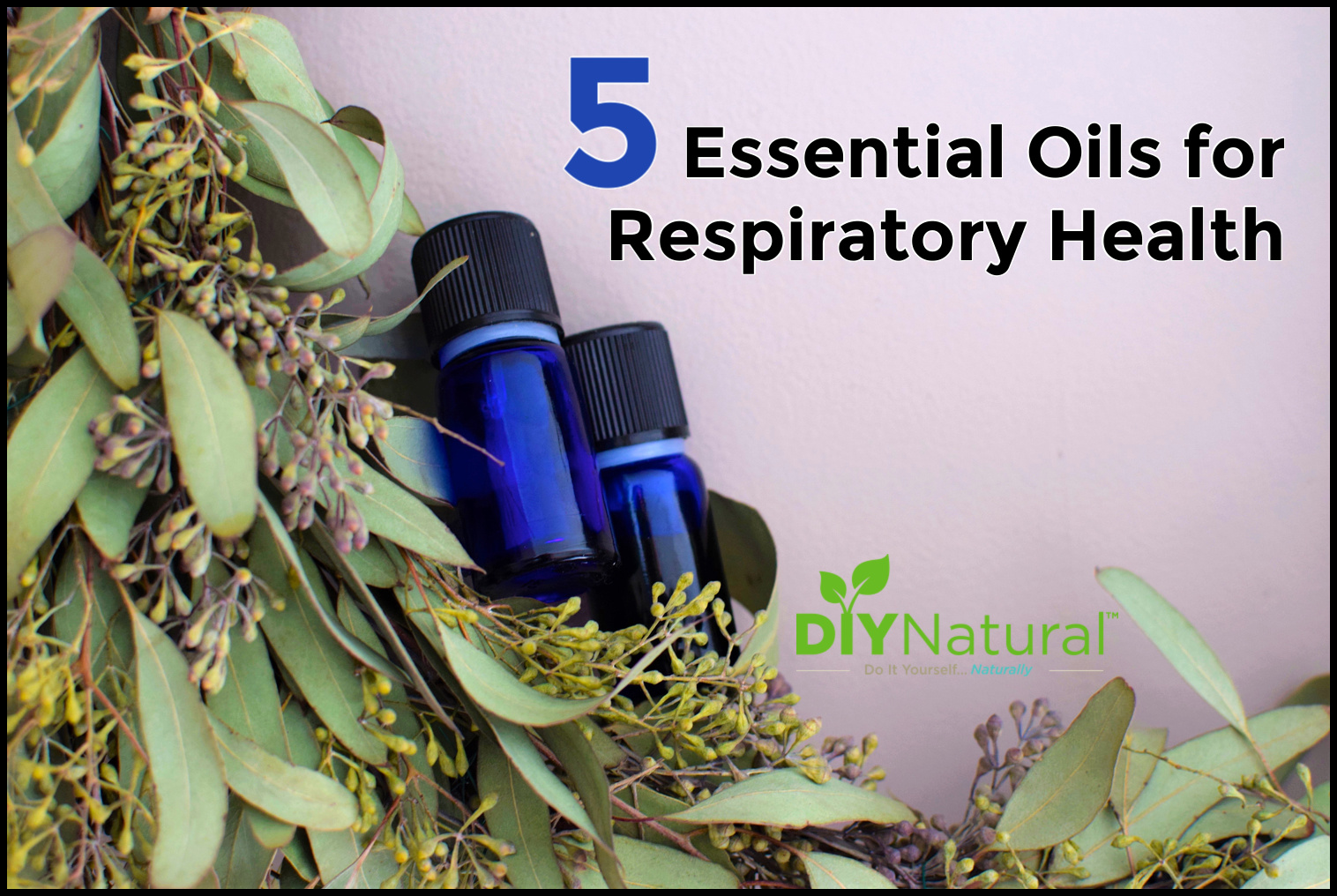 List of 5 Essential Oils to Support Respiratory Health