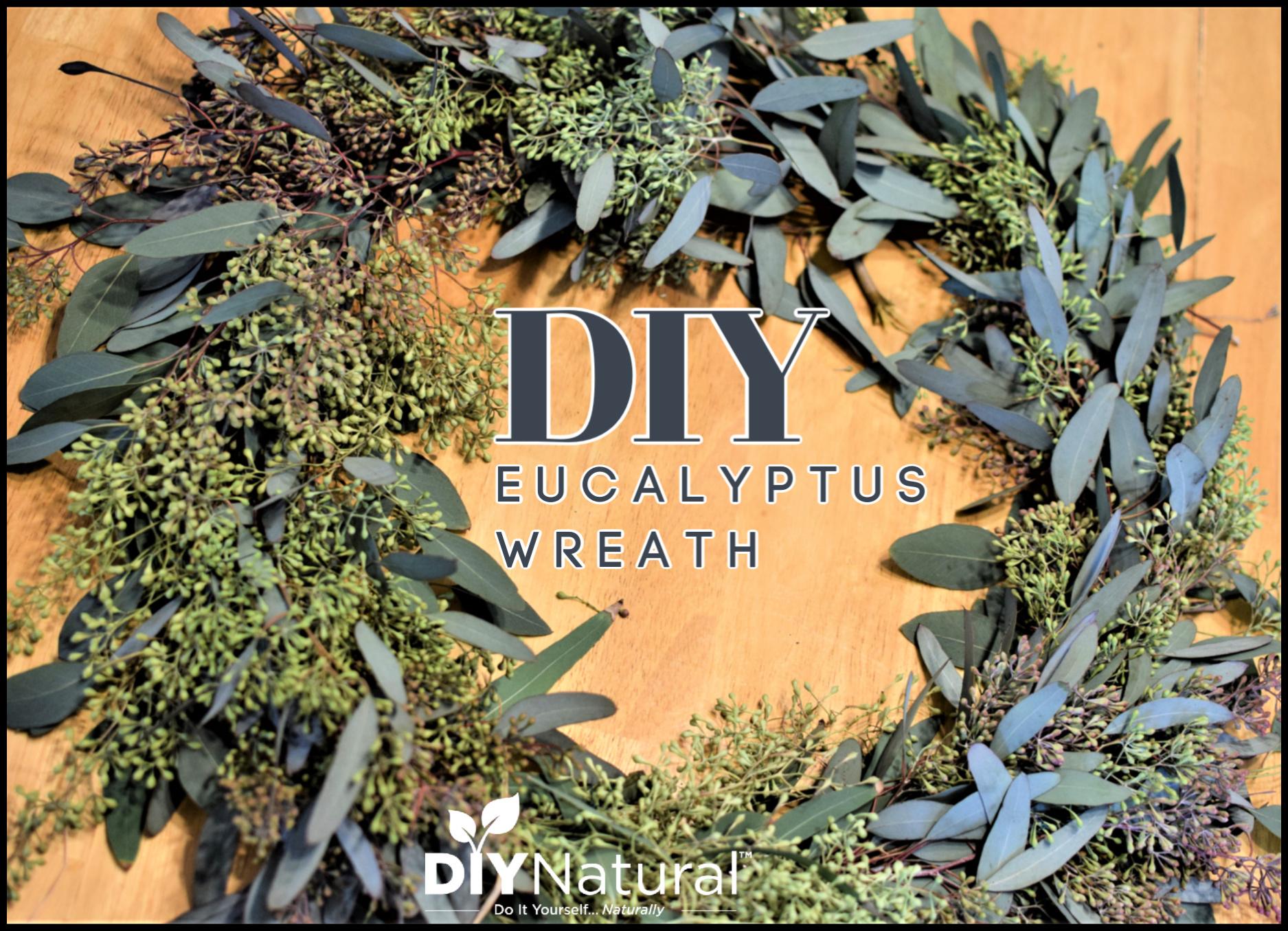 Eucalyptus Wreath A Simple Tutorial For A Fresh Diy Eucalyptus Wreath