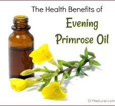 Learn About Health Benefits of Evening Primrose Oil