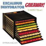 GIVEAWAY: Excalibur Dehydrator ($250 Value)