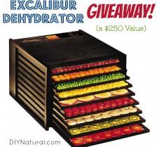 GIVEAWAY: Excalibur Dehydrator ($250 Value)