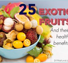 25 Exotic Fruits And Their Many Health Benefits