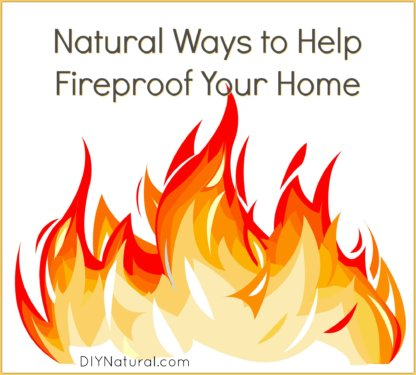 Fireproof House