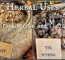 Herbal Uses For Frankincense and Myrrh