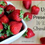 Using and Preserving In-Season Strawberries