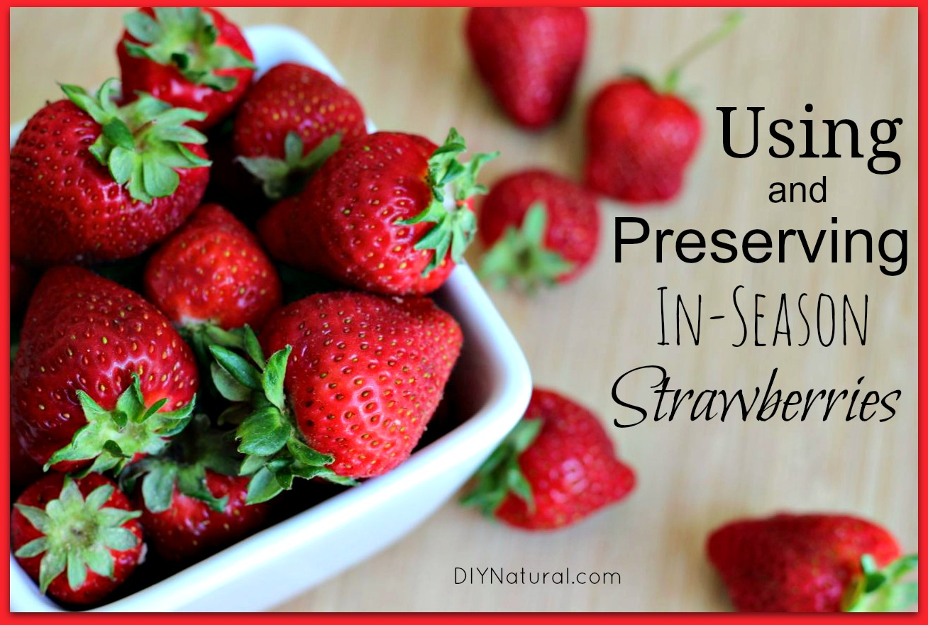 Preserving Strawberries Recipes Fresh Strawberry Recipes