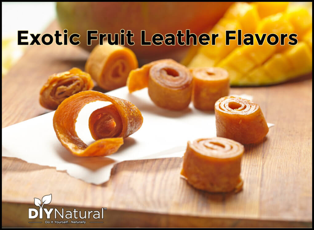 Fruit Leather Flavors