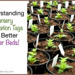 Understand Nursery Tags for Beautiful Flowerbeds