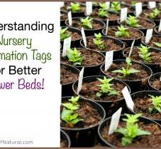 Understand Nursery Tags for Beautiful Flowerbeds
