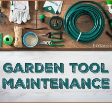 Garden Tool Maintenance: A Garden Tool Checkup!