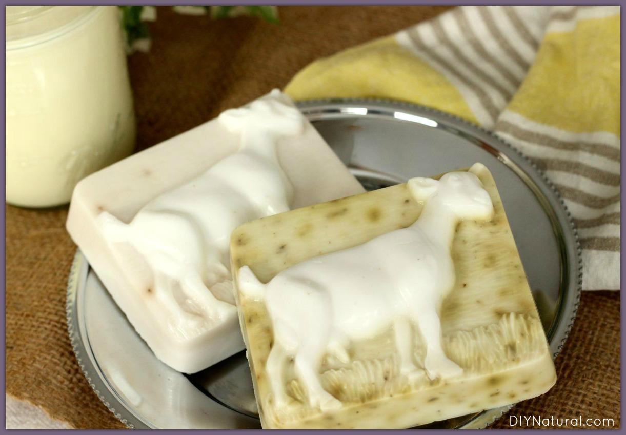 Goats Milk Soap Recipe 1