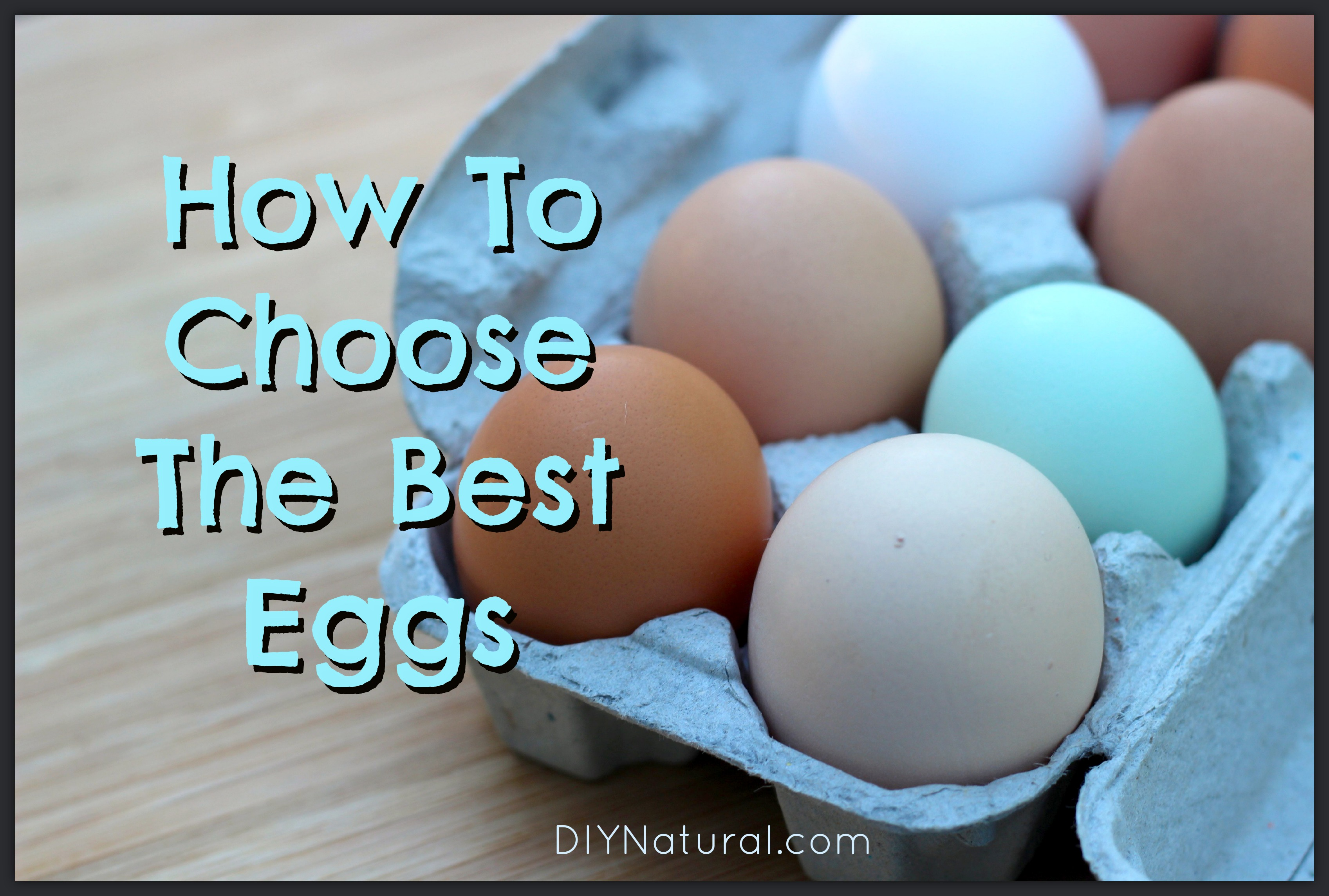 How are eggs useful? 31