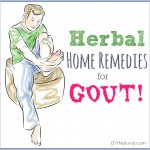 5 Herbal Therapies to Help You Recover From Gout