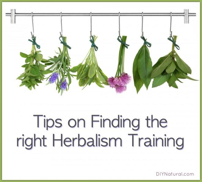 Herbalist School