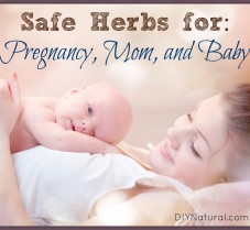 5 Great Herbs for New/Expectant Mothers & Baby