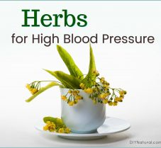Herbal Strategies to Help with High Blood Pressure