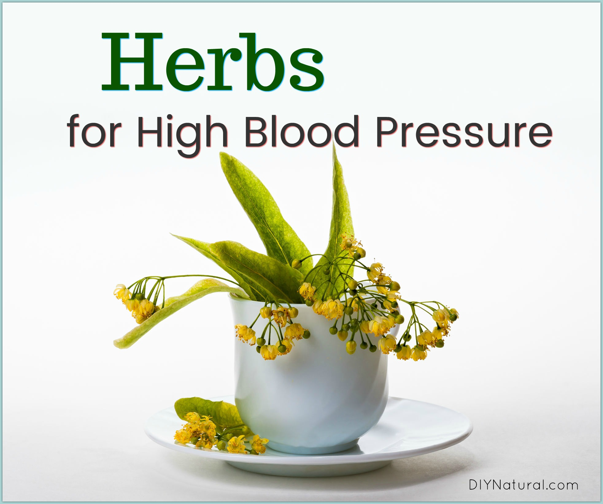 High Blood Pressure Remedies Natural Way