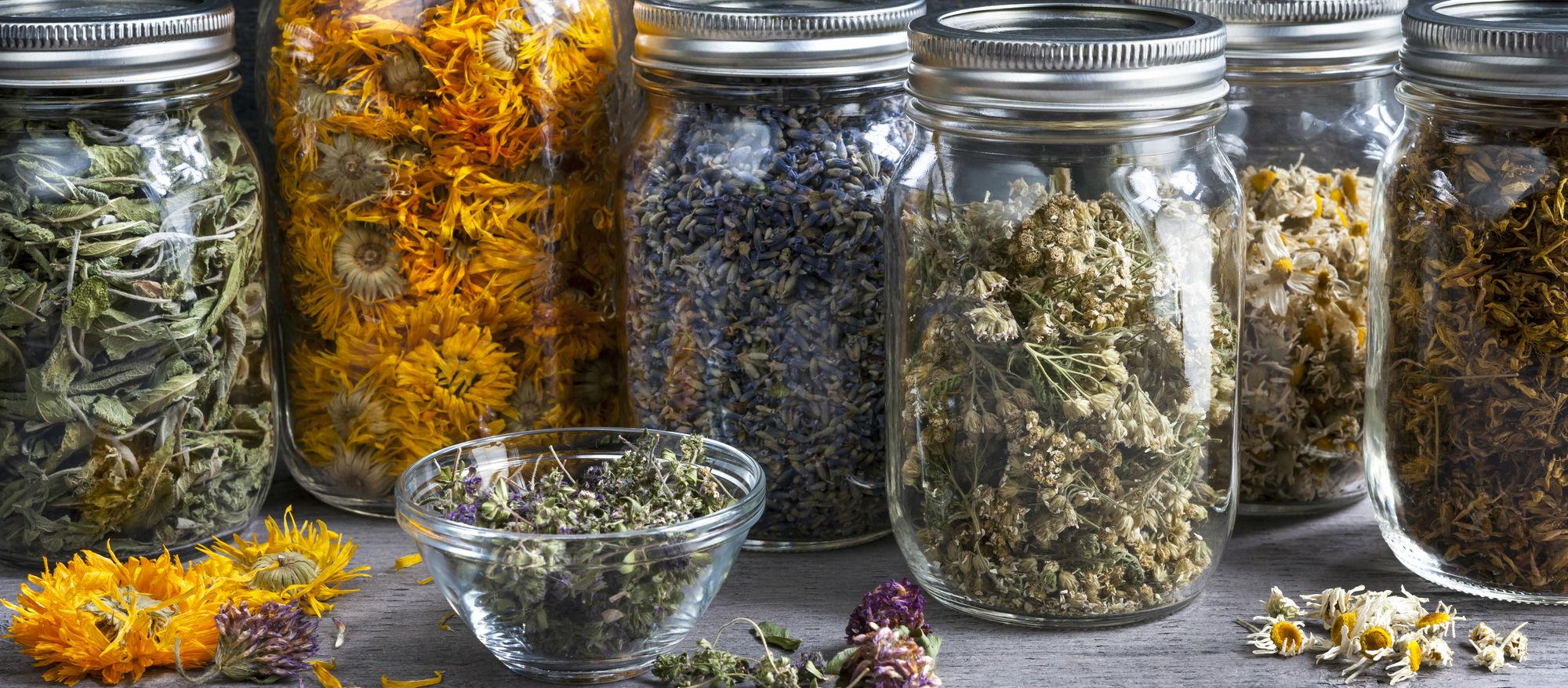 Natural Health Articles hero