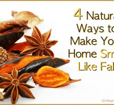 Four Homemade Air Freshening Products for Autumn