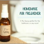 Homemade Air Freshener: A Natural Poo-Pourri Spray