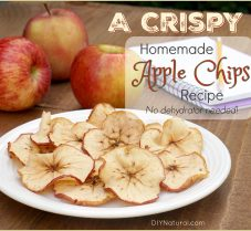 Make Crispy Apple Chips Without A Dehydrator
