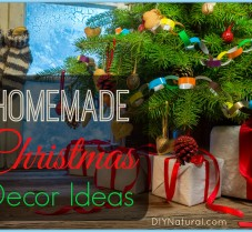 Natural Holiday Decorating Ideas For The Entire Year