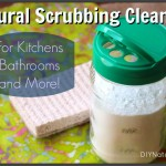 DIY Natural Powdered Scrubbing Cleanser