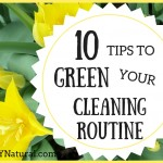 10 Ways to Green Your Cleaning Routine in 2016