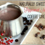 Homemade Peppermint Mocha Coffee Creamer Recipe