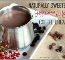 Homemade Peppermint Mocha Coffee Creamer Recipe