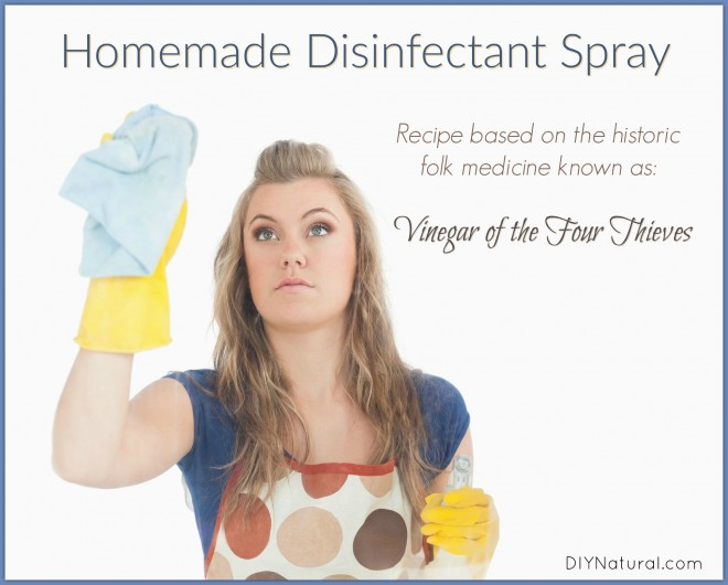 Homemade Disinfectant Spray Four Thieves