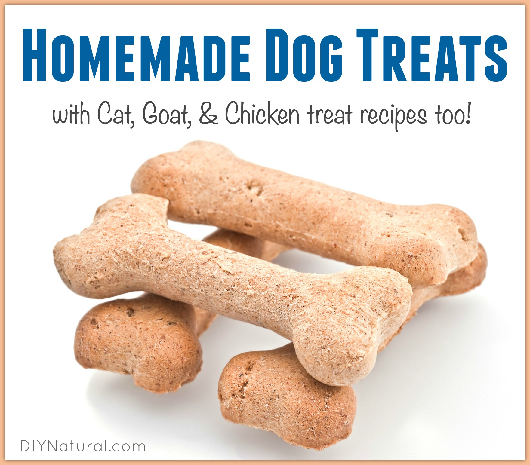 Dog And Cat Treat Recipes