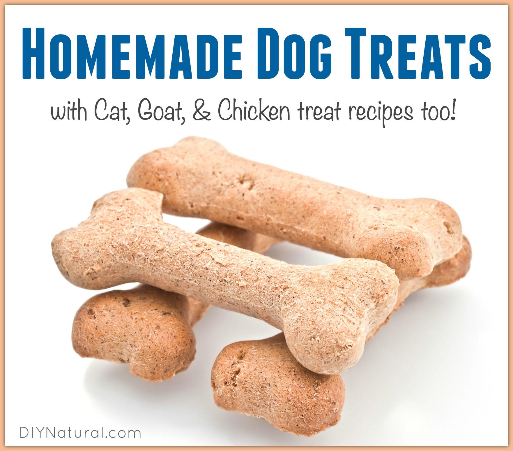 Organic Homemade Dog Treats Recipes