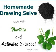 Homemade Drawing Salve With Plantain & Charcoal