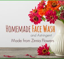 Homemade Face Wash and Astringent Made from Zinnias