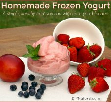 Simple, Delicious Homemade Frozen Yogurt in a Blender