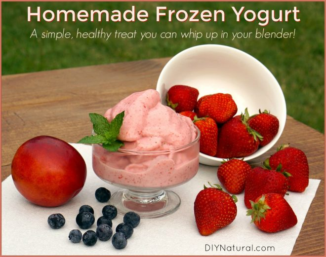 Homemade Yogurt Ice Cream Recipe Dishmaps