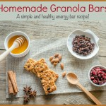 Simple and Healthy Homemade Granola/Energy Bars