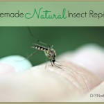 Natural Homemade Insect/Bug Repellent Spray