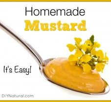 Homemade Mustard With Delicious Herbal Additions