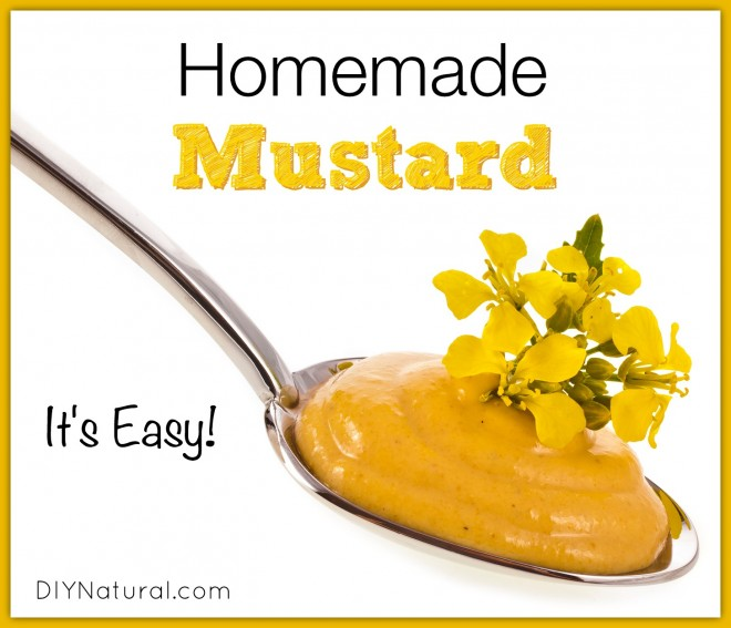 Basic Homemade Mustard & Some Delicious Herbal Additions