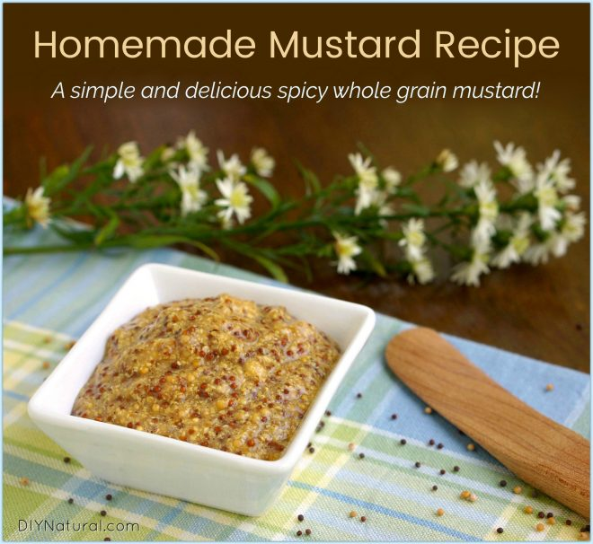 Homemade Mustard Recipe