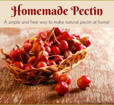 Learn How to Make Natural Pectin For Jelly and Jam